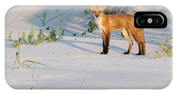 Beach Fox #3 IPhone Case