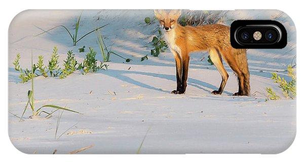 Beach Fox #3 IPhone Case