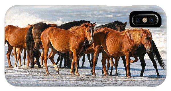 Beach Ponies IPhone Case