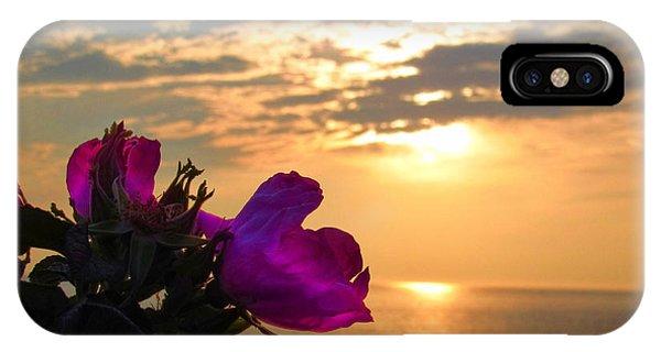 Beach Roses IPhone Case