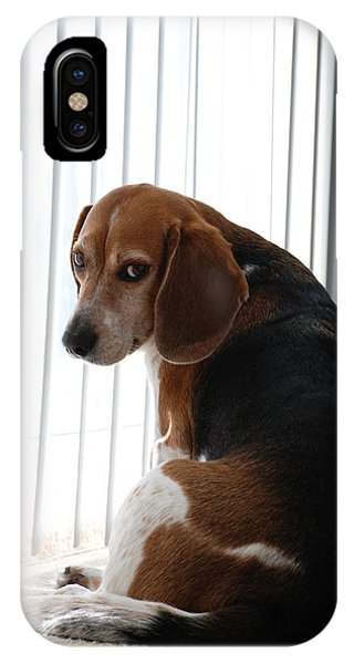 Beagle Attitude IPhone Case