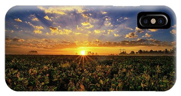 Bean Field Dawn IPhone Case
