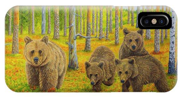 Salo iPhone Case - Bear Family by Veikko Suikkanen