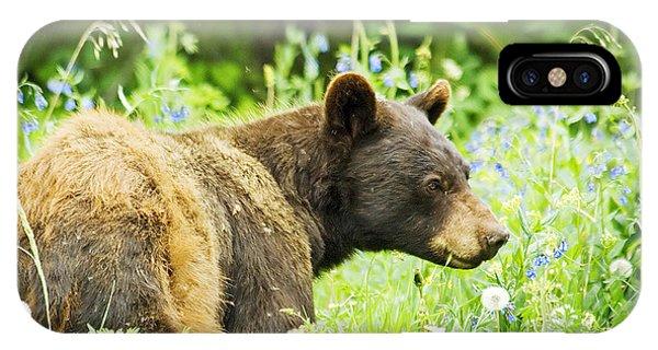 Bear In Flowers IPhone Case