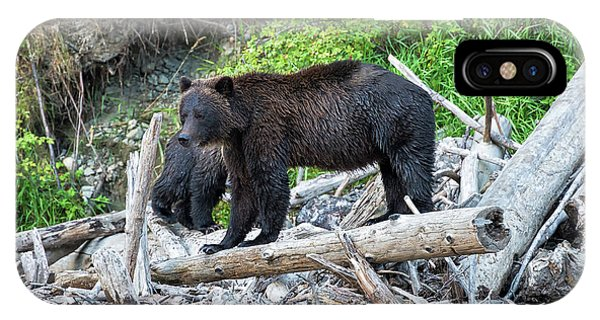 In The Great Bear Rainforest IPhone Case