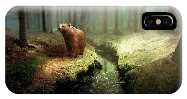 Fantasy iPhone Case - Bear Mountain Fantasy by David Dehner
