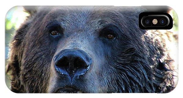 Bear On Grouse IPhone Case