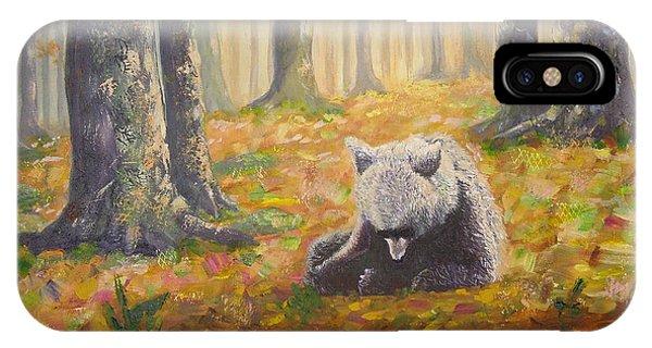 Bear Reflecting IPhone Case