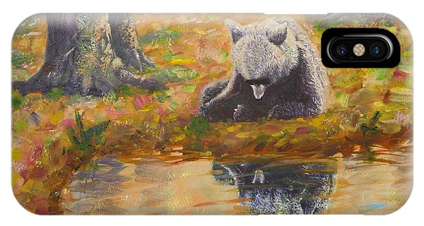 Bear Reflecting IPhone Case