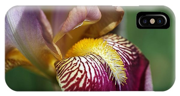 Bearded Iris Flower Mary Todd IPhone Case
