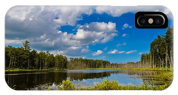 Beautiful Afternoon In The Pine Lands IPhone Case