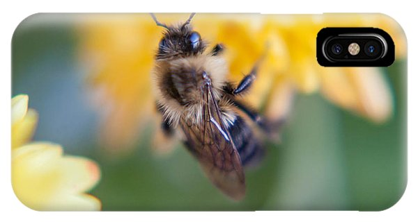 Beautiful Bee IPhone Case