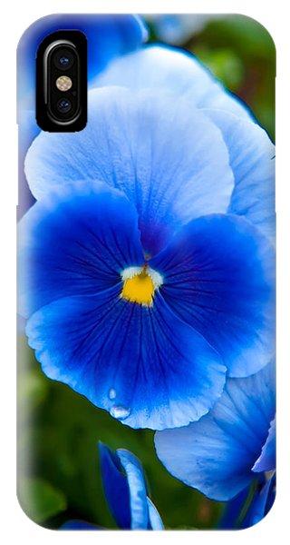 Fall Flowers iPhone Case - Beautiful Blues by Az Jackson