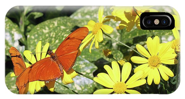 iPhone Case - Beautiful Butterflies by Kelly Holm