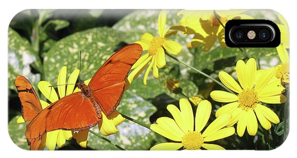 Beautiful Butterflies IPhone Case
