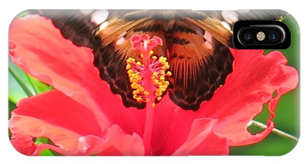 Beautiful Butterfly IPhone Case