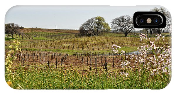 Beautiful California Vineyard Framed With Flowers IPhone Case
