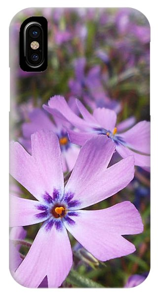 Beautiful Creeping Purple Phlox IPhone Case