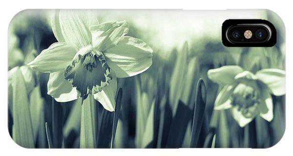 Beautiful Daffodil IPhone Case