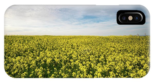 IPhone Case featuring the photograph Beautiful Field With Yellow Flowers In Spring by Michalakis Ppalis