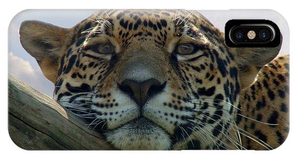 Beautiful Jaguar IPhone Case