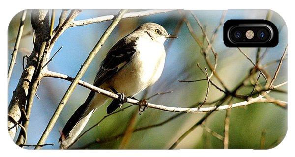 Beautiful Mockingbird Phone Case by Teresa Blanton