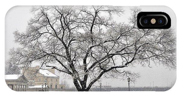 Beautiful Snow Tree IPhone Case
