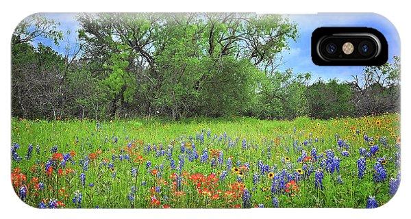 Beautiful Texas Spring IPhone Case