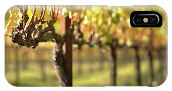 Beautiful Vineyard In Napa Valley IPhone Case