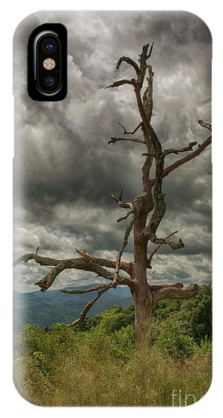 Beautifully Dead IPhone Case