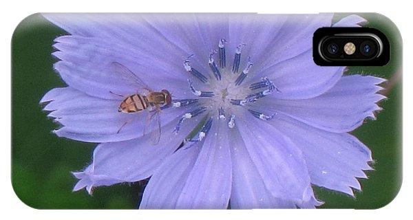 Beauty And The Bee Phone Case by Marjorie Tietjen
