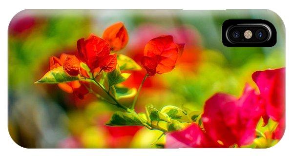 Beauty In A Blur IPhone Case