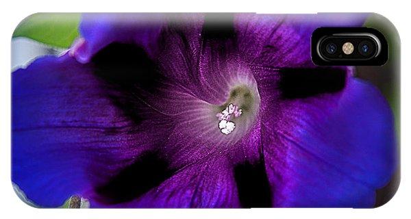 Beauty In Blue IPhone Case