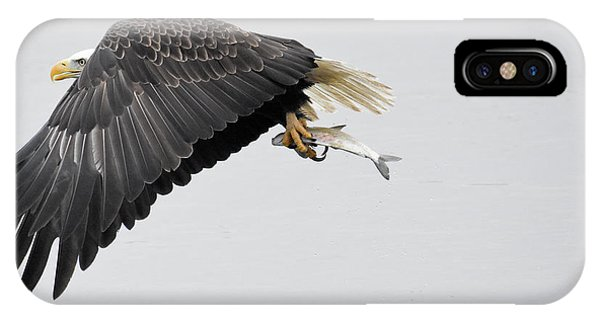 Beauty In Motion IPhone Case
