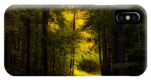 Beauty In The Forest IPhone Case