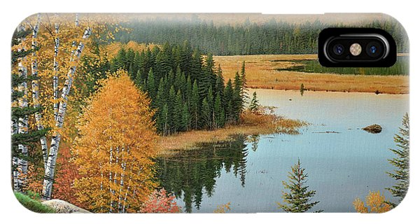 Beaver Pond Lookout IPhone Case