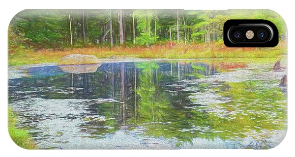 Beaver Pond Reflections IPhone Case