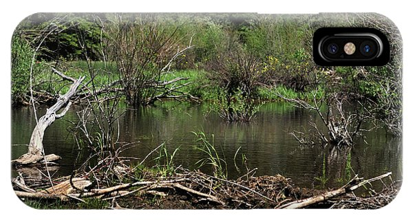 IPhone Case featuring the photograph Beaver Pond by Ron Cline