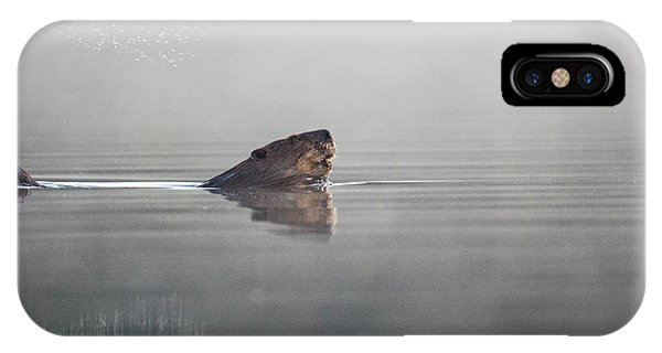IPhone Case featuring the photograph Beaver Tail by Darryl Hendricks