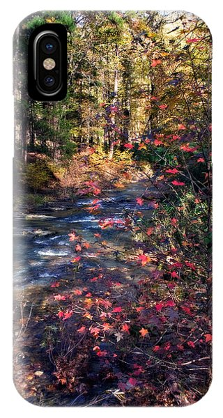 Beavers Bend IPhone Case