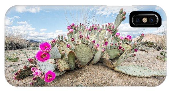 Beavertail Cactus IPhone Case
