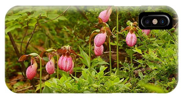 Bed Of Lady's Slippers IPhone Case