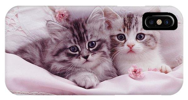Bedtime Kitties IPhone Case