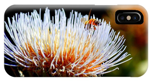 Bee And Artichoke IPhone Case