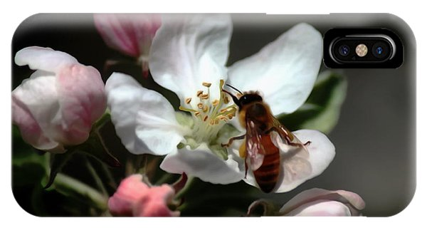 Bee And Blossom IPhone Case