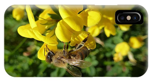 Bee And Broom In Bloom IPhone Case