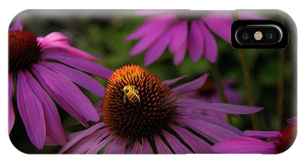 Bee And Coneflower IPhone Case