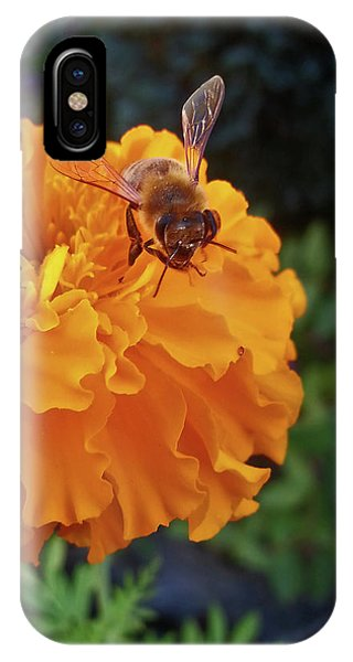 Bee And Marigold IPhone Case