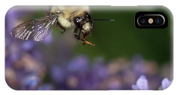 Bee Approaches Lavender IPhone Case