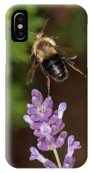 Bee Ballet IPhone Case